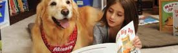 Read to Therapy Dogs